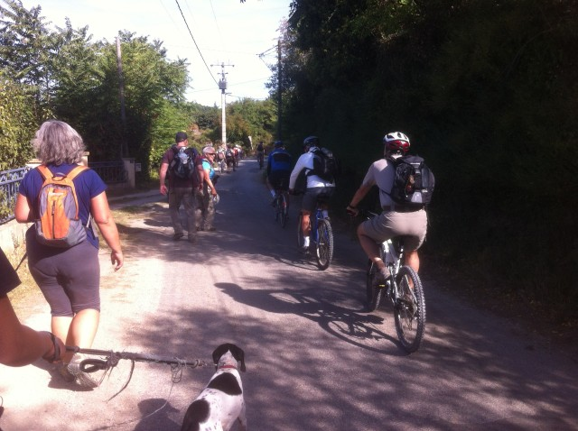 cyclistes voie verte pont du gard